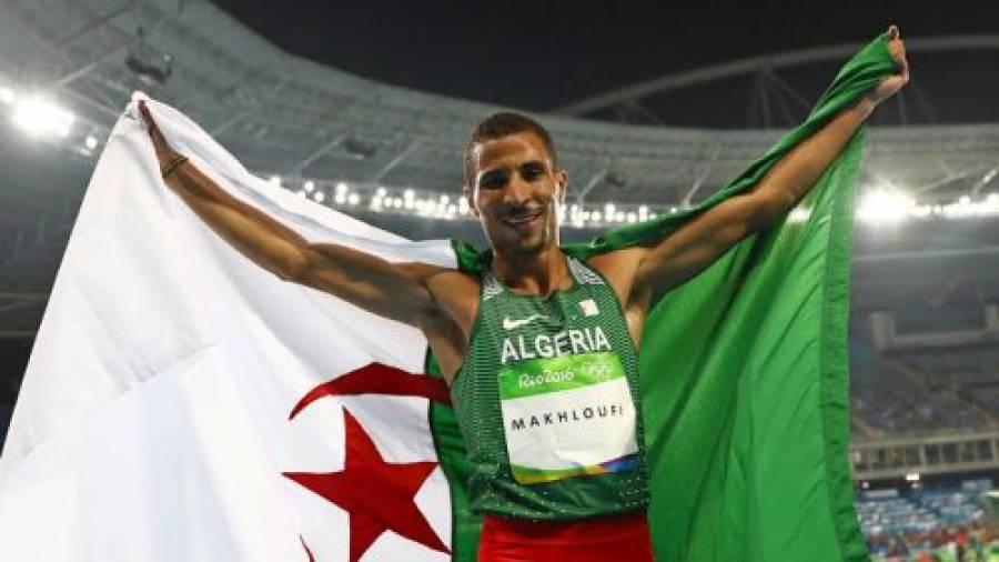 Махлуфи Тауфик, Алжир