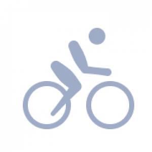Велотрековые гонки