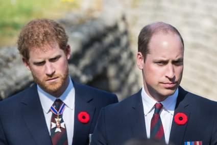 Принцы Гарри и Уильям утвердили проект статуи принцессы Дианы