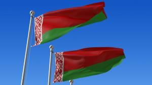 Военные Белоруссии отработают борьбу с диверсантами во время учений