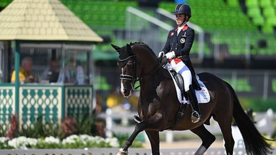 Выездка - один из видов конного спорта