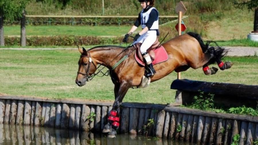 Троеборье - олимпийская дисциплина конного спорта