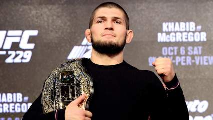 Шлеменко заявил, что Хабиб вернется в UFC ради денег