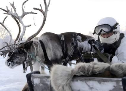 Армии Норвегии рекомендовали брать пример с российских военных