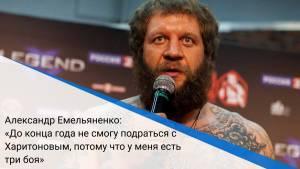 Александр Емельяненко: «До конца года не смогу подраться с Харитоновым, потому что у меня есть три боя»