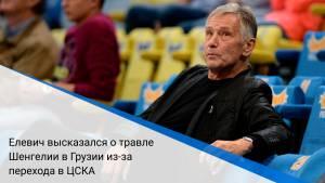 Елевич высказался о травле Шенгелии в Грузии из-за перехода в ЦСКА