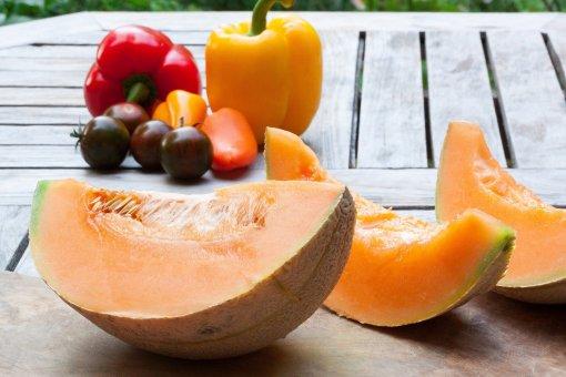Диетолог Кораблева сравнила пользу арбуза и дыни для здоровья
