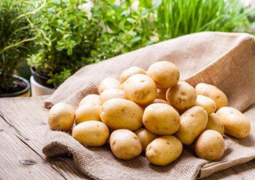 Россия не исключает введения запрета на ввоз картофеля из Азербайджана
