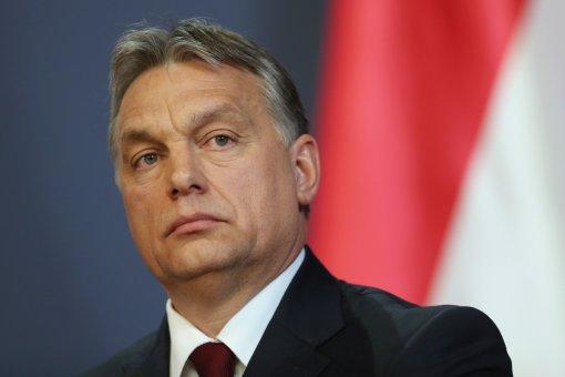 В Венгрии назвали меры против закона о секс-меньшинствах легализованным хулиганством