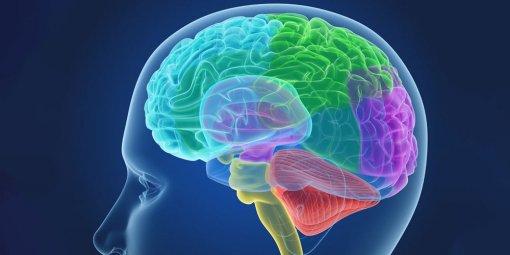 Ученые: коронавирус вызывает изменения в мозге, похожие на шизофрению