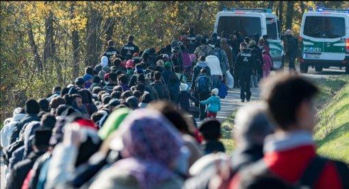 В Литве могут повторно ввести режим ЧП из-за мигрантов со стороны Беларуси
