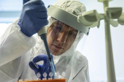 В России будет ещё одна вакцина от COVID-19: ФМБА успешно завершила доклинические исследования
