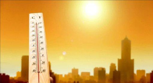 Москвичам сообщили о рекордной жаре и сухих грозах 14 июля