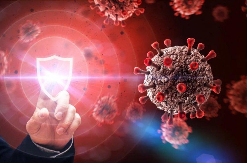 Американские специалисты сообщили, сколько держится иммунитет после COVID-19