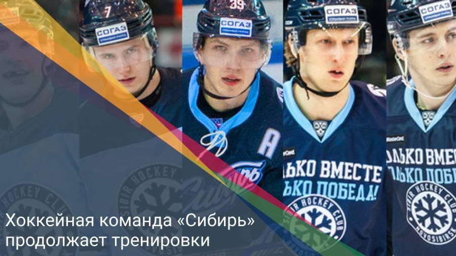 Хоккейная команда «Сибирь» продолжает тренировки