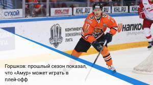 Горшков: прошлый сезон показал, что «Амур» может играть в плей-офф