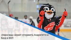 «Авангард» может отправить Андригетто и Бека в ВХЛ