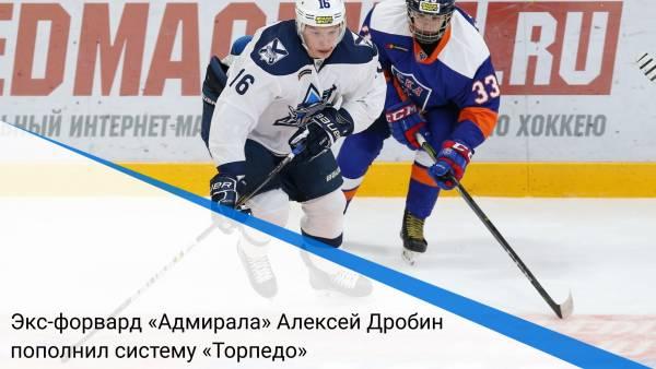 Экс-форвард «Адмирала» Алексей Дробин пополнил систему «Торпедо»