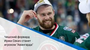 "Чешский форвард Иржи Секач станет игроком ""Авангарда"""