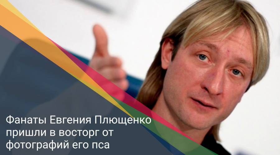 Фанаты Евгения Плющенко пришли в восторг от фотографий его пса