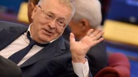Жириновский предложил Саакашвили идти в баню, а не на выборы