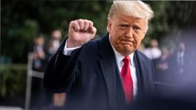 Трамп призвал остановить подсчет голосов на выборах в США