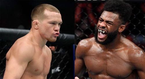 Вчера: Бой между Петром Яном и Стерлингом на UFC 256 отменен