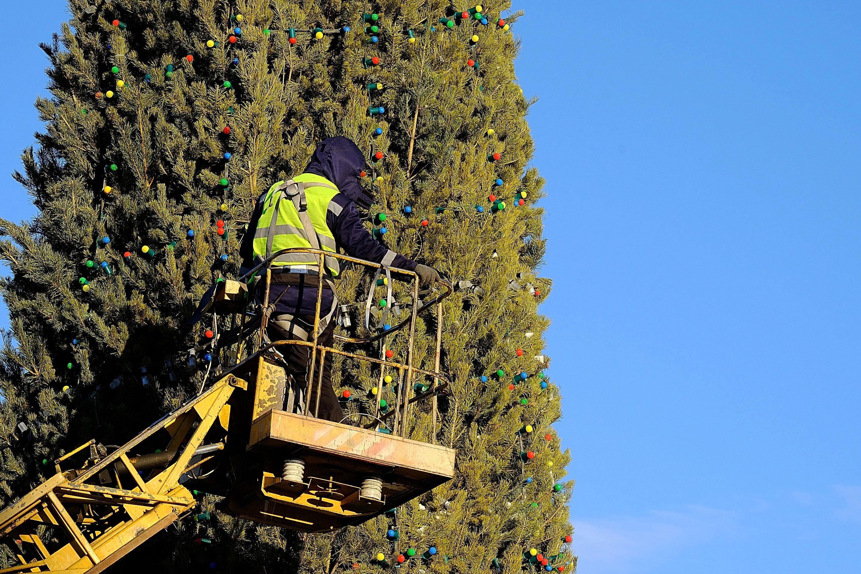 В Улан-Удэ начали устанавливать городскую елку на площади Советов