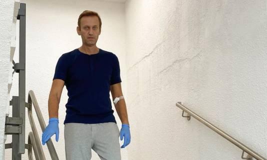 Ринк: в пробах Навального могли не заметить неопасные вещества
