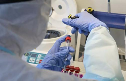 В Кремле оценили динамику выявленных случаев коронавируса