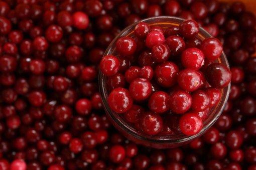 Американские врачи назвали простую ягоду от «плохого» холестерина, тромбов и воспалений