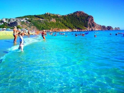 Профессор из Турции предупредил туристов об опасных медузах на курортах страны